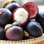 Kandungan dan Manfaat Buah Manggis Bagi Kesehatan