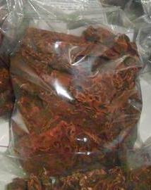 Jual Sarang Semut Papua Asli Murah