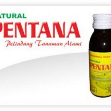 Jual Natural Pentana Berantas Hama Tanaman Ampuh Cepat Dan Kilat
