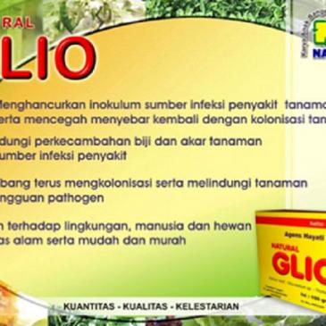Jual Gliocladium Nasa Kendalikan Penyakit Hama Tanaman