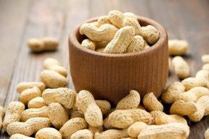 Makanan Yang Menyehatkan Sistem Saraf