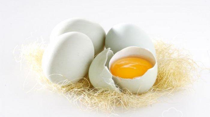 Makan Telur Bebek, Maka Ini Yang Akan Anda Rasakan